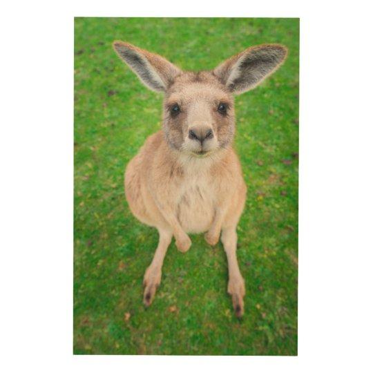 Getty Images | Baby Kangaroo Wood Wall Art