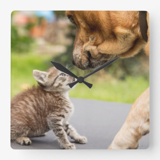 Getty Images | Dog & Cat In Love Square Wall Clock