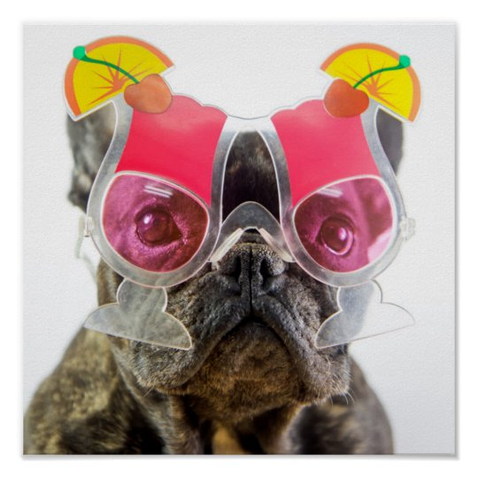 Getty Images   Dog With Cocktail Glasses Poster