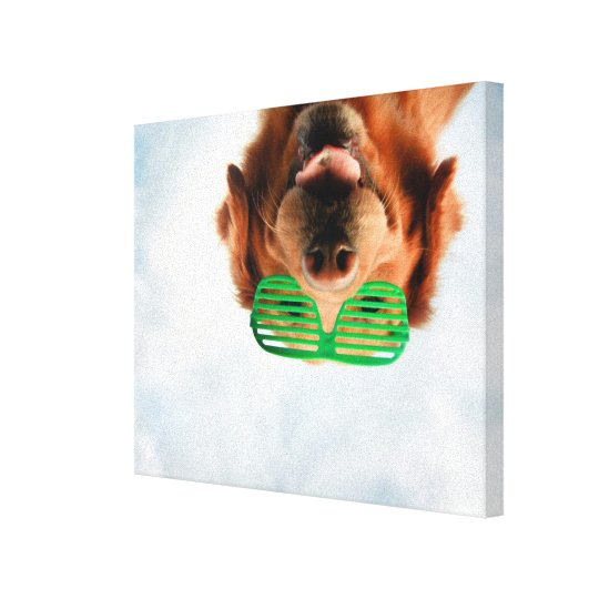 Getty Images | Dog With Glasses Canvas Print