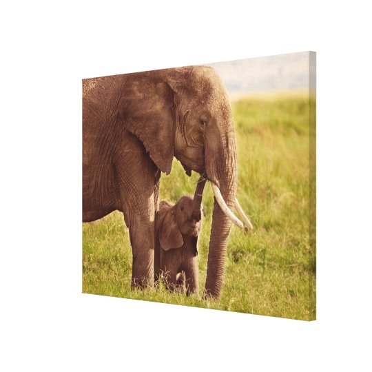 Getty Images | Elephant & Baby Canvas Print