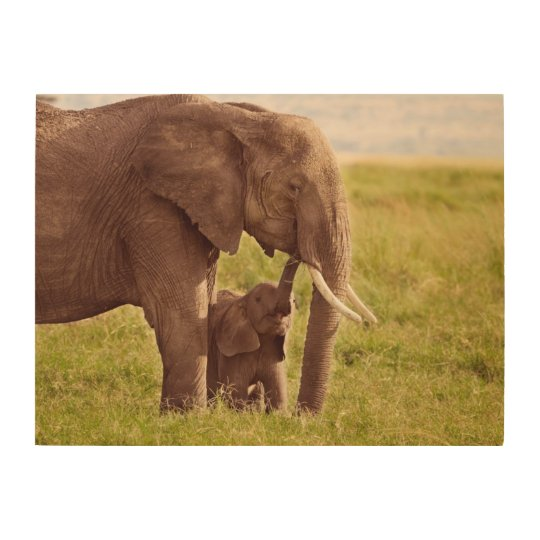 Getty Images | Elephant & Baby Wood Wall Art