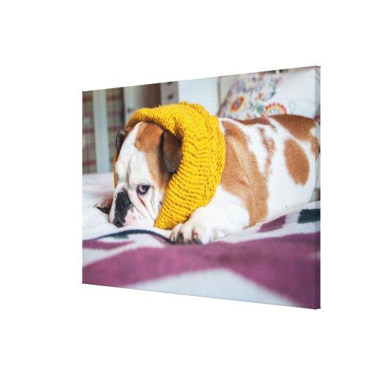 Getty Images   English Bulldog Canvas Print