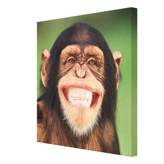 Getty Images | Grinning Chimpanzee Canvas Print