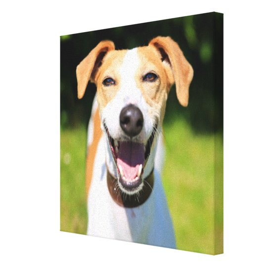 Getty Images | Laughing Dog Canvas Print