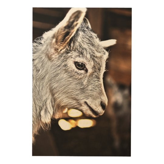 Getty Images | Little Goat Wood Print