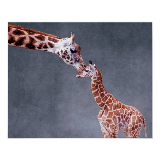 Getty Images | Mother & Baby Giraffe Poster