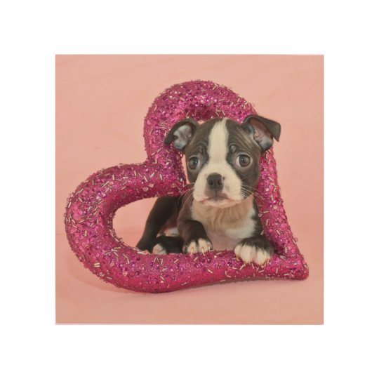 Getty Images | Puppy Love Wood Wall Decor