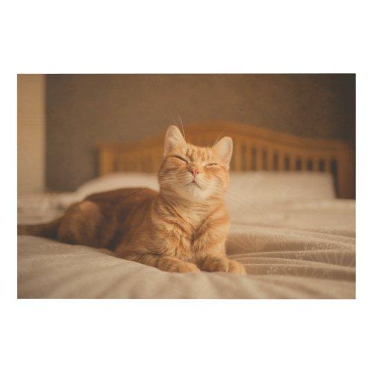 Getty Images   Sleepy Cat Wood Wall Decor