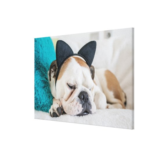 Getty Images | Sleepy Dog with Cat Headband Canvas Print