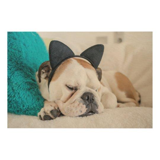 Getty Images | Sleepy Dog with Cat Headband Wood Print