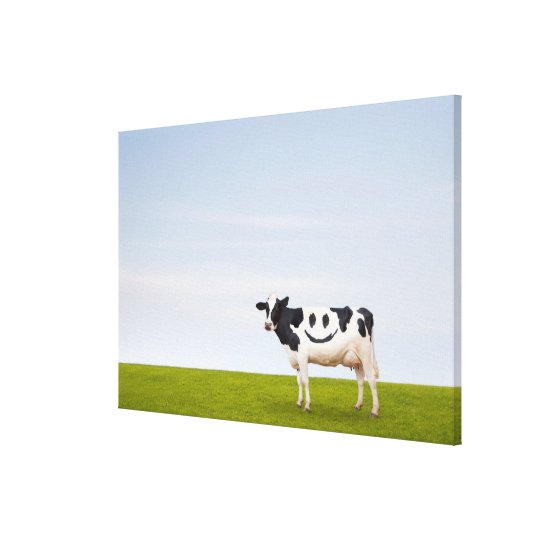 Getty Images | Smiley Face Cow Canvas Print