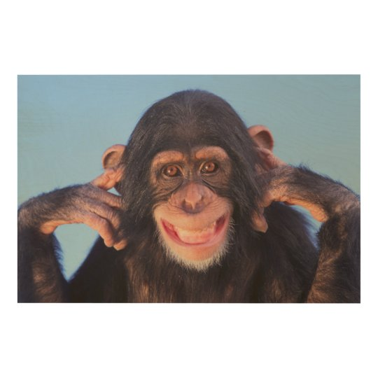 Getty Images | Smiling Chimpanzee Wood Wall Art