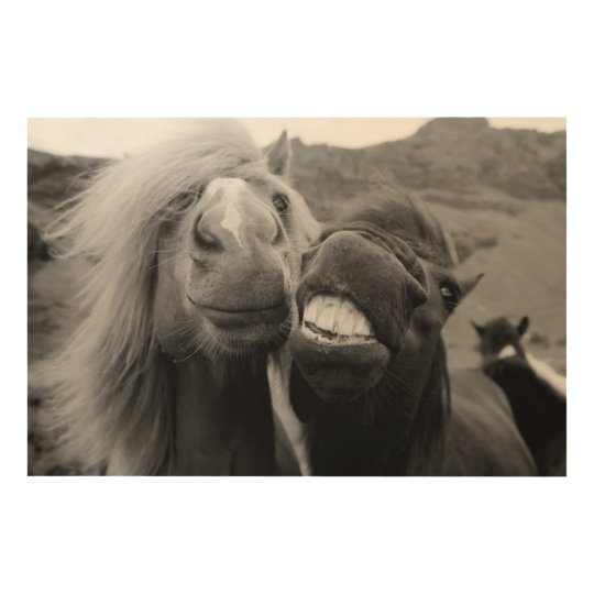 Getty Images | Smiling Horses Wood Print