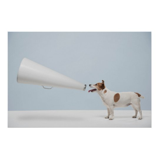 Getty Images | Speaking Dog Poster