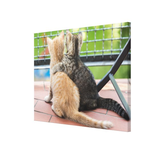 Getty Images | Two Kittens on a Balcony Canvas Print