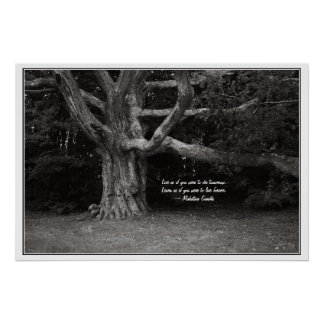 Ghandi Quote Poster, Perley Oak Monochrome Poster