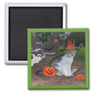 Ghost Cat Square Magnet