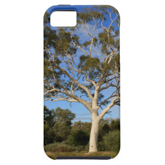 Ghost gum tree, Outback Australia iPhone 5 Cover