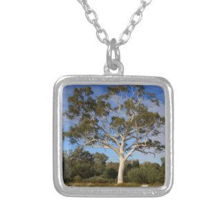 Ghost gum tree, Outback Australia Silver Plated Necklace