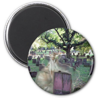 Ghost In The Cemetery Refrigerator Magnets