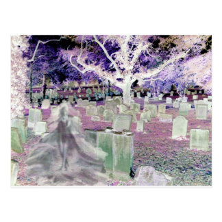 Ghost in the Cemetery Postcard