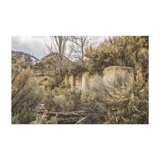 Ghost Town Foundation;  Standardville, Utah Canvas Print
