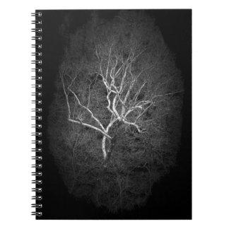 Ghost Tree Notebook