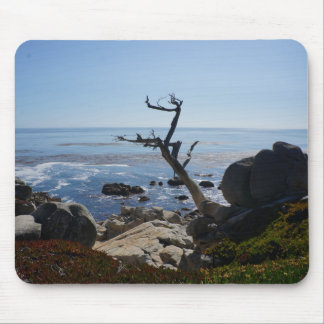 Ghost Tree – Scenic 17 Mile Drive Mousepad