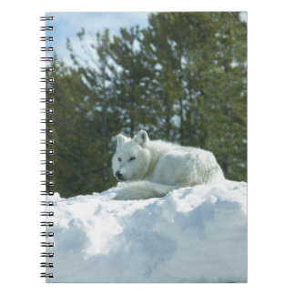Ghost Wolf Spiral Notebooks