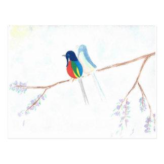 Ghostbird Postcard