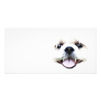 Ghostly dog photo card template