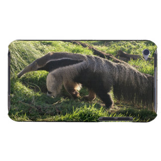 Giant Anteater iTouch Case Barely There iPod Cover