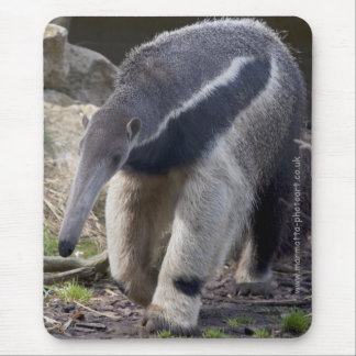 Giant Anteater Mousemat