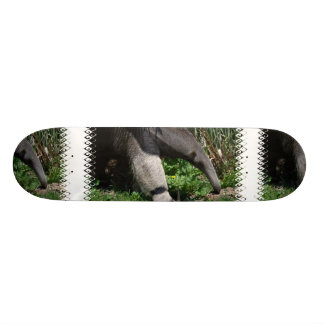 Giant Anteater Photo Skateboard