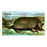 Giant Armadillo Business Card