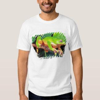 Giant Bicolor Monkey Treefrog, Phyllomedusa T Shirts