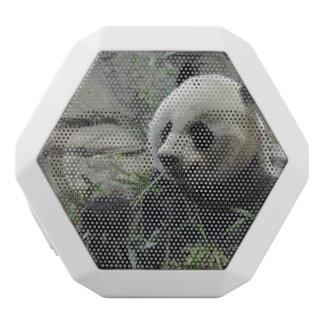 Giant Chinese Panda Bear White Boombot Rex Bluetooth Speaker