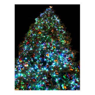 Giant Christmas Tree IIII Postcard