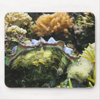Giant Clam Mouse Pad