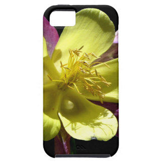 Giant Columbine iPhone 5 Covers