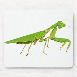 Giant Green Praying Mantis Mouse Pad