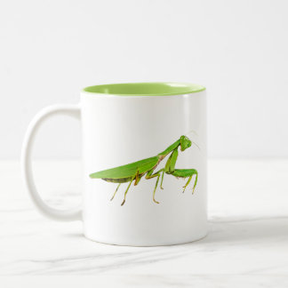 Giant Green Praying Mantis Mug