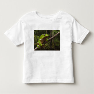 Giant leaf frog Phyllomedusa bicolor) Toddler T-Shirt