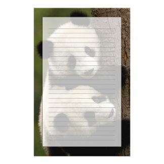 Giant panda babies (Ailuropoda melanoleuca) 2 Personalised Stationery