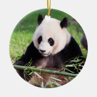 Giant Panda Mei Xiang Ceramic Ornament
