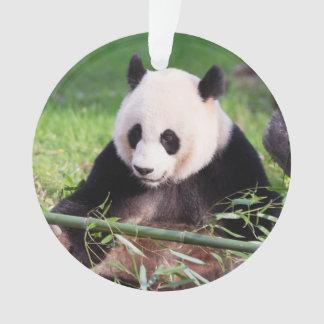 Giant Panda Mei Xiang Ornament