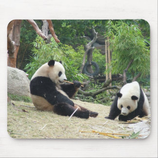 Giant panda mouse pad