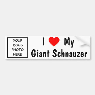 Giant Schnauzer Bumper Sticker