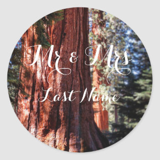 Giant Sequoia Stickers